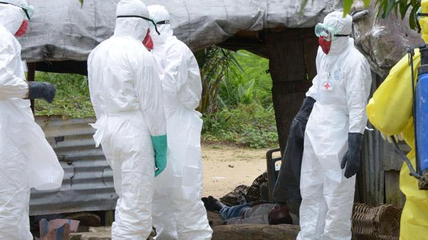 Ébola: La OMS declaró el fin de la emergencia mundial