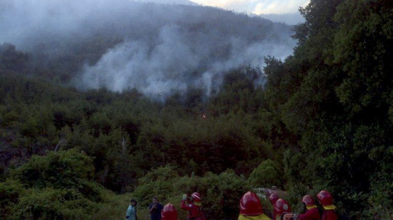 El informe plantea recuperar 3.000 hectáreas prioritarias afectadas por los incendios que afectaron a Chubut el último verano.