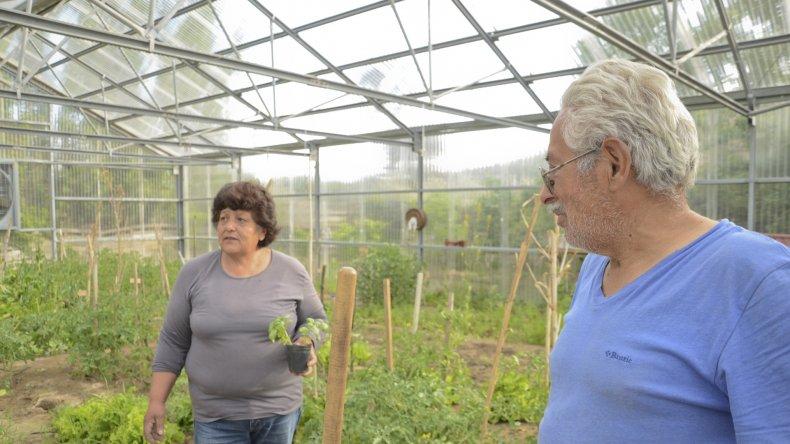 Desde el año 2000 Doly y Pedro trabajan en su granja en Kilómetro 14. Cultivan verduras y frutas de todo tipo.