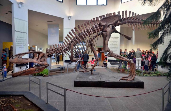 En Trelew descansa el dinosaurio más grande del mundo
