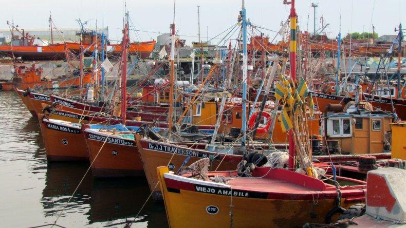 Quieren traer merluza de Mar del Plata para procesarla en esta ciudad