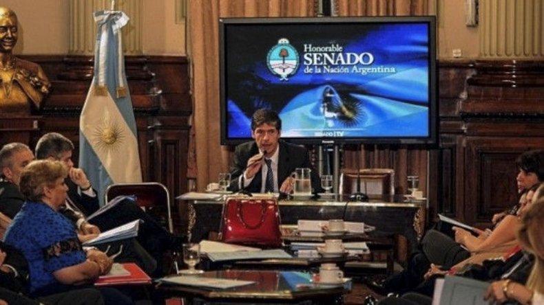 En senador nacional Juan Manuel Abal Medina encabeza el plenario de dos comisiones del cual surgió un dictamen favorable para el proyecto de creación de YCRT.
