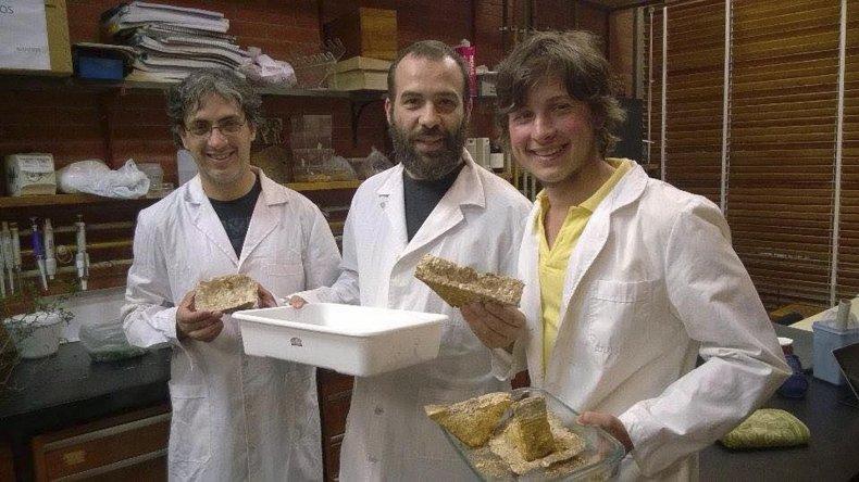 Investigadores chubutenses fabricaron un novedoso bioaglomerado que busca ser el reemplazante del telgopor.