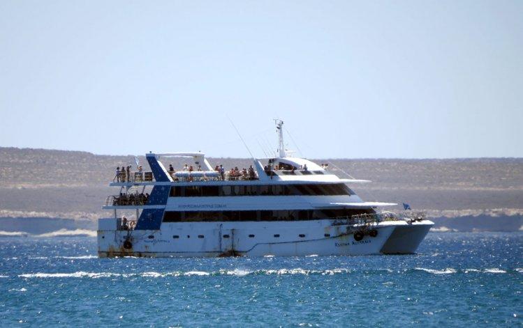 El Regina Australe ofrece paseos inigualables en la comodidad de un catamarán que cuenta con una gran trayectoria.