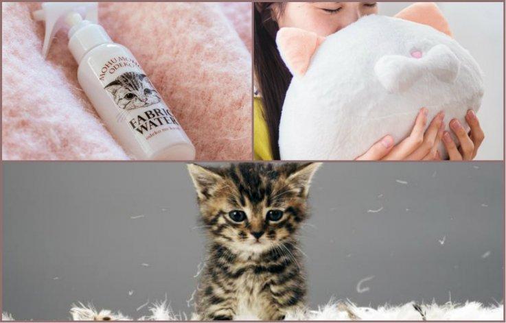 Ponen a la venta  perfume con olor a gato