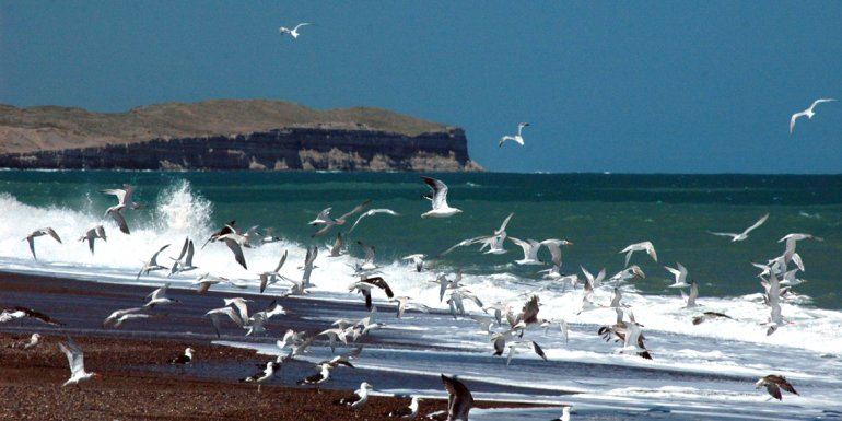 El balneario tiene una gran playa de declive suave y ofrece una infraestructura turística.