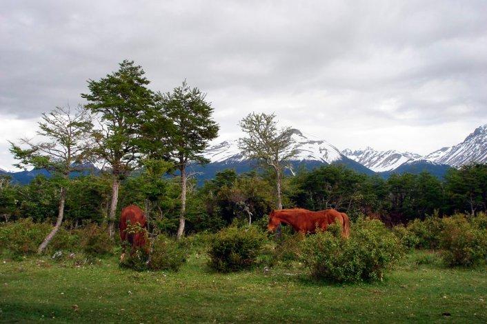 Sitio tranquilo y de gran belleza paisajística es el lugar ideal para quienes disfrutan de la paz de las pequeñas localidades.