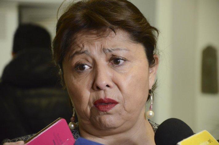 La diputada Navarro ya anticipó que el Frente para la Victoria acompañaría el pedido del gobernador Das Neves.