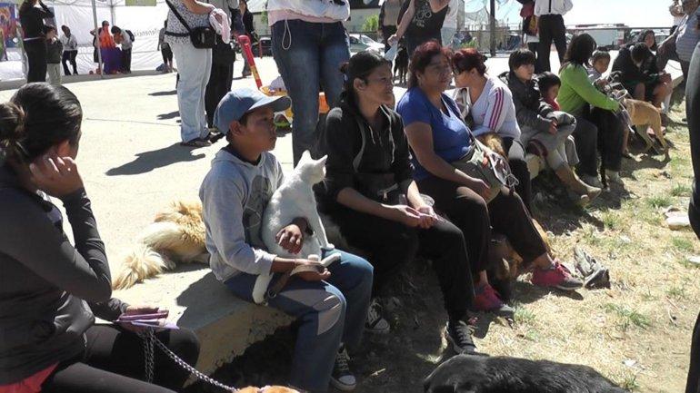 Gatos y perros podrán ser desparasitados a partir de mañana en la asociación vecinal del barrio Mariano Moreno.