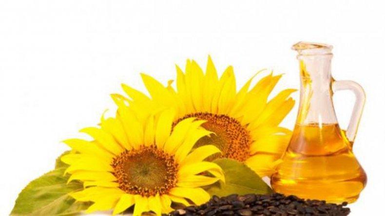 El aceite de girasol es considerado de excelente calidad comestible.