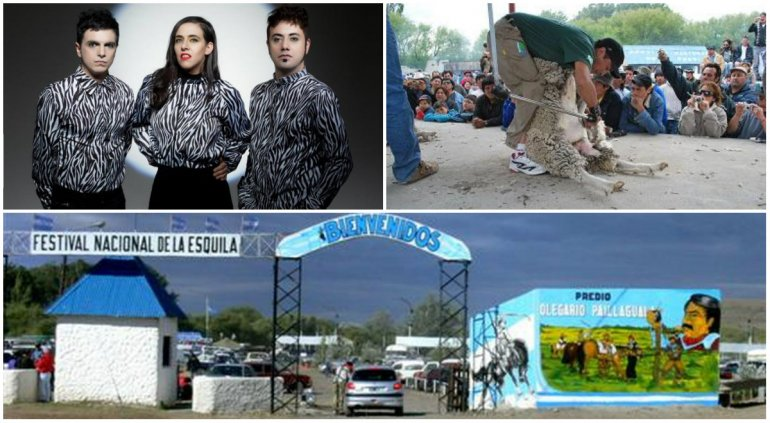 Este fin de semana se celebrará la Fiesta Nacional de la Esquila