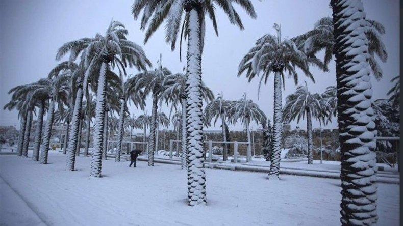 Nevó por primera vez en 85 años en Arabia Saudita