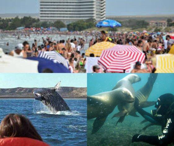 Puerto Madryn recibió un 15% menos de turistas