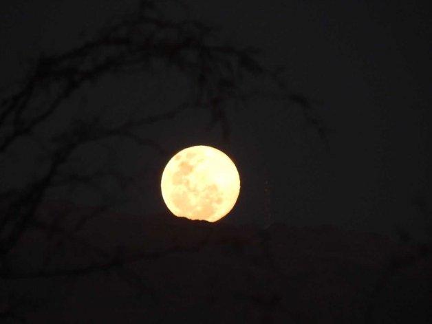 Esta noche se juntan la Luna y una estrella roja gigante