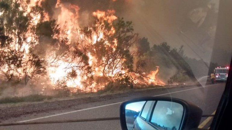 Hasta el momento se quemaron 1.100 hectáreas y aseguran que fue intencional