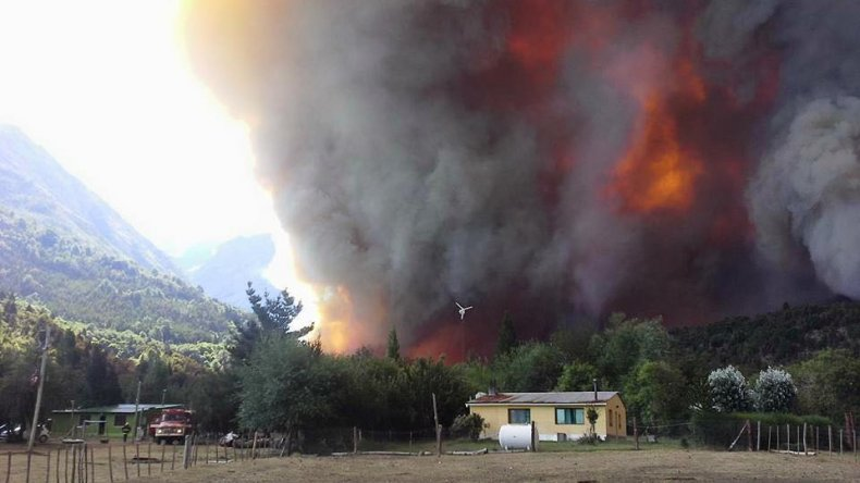 Incendio en Parque Los Alerces. Foto: Gustavo Jaramillo.