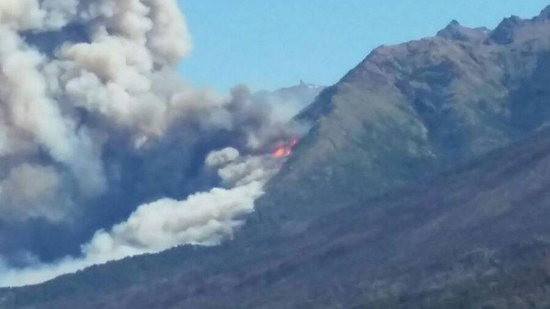 El sector quemado se había recuperado de otros incendios