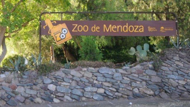 Volvieron a cerrar el zoo de Mendoza por la muerte de otros ciervos