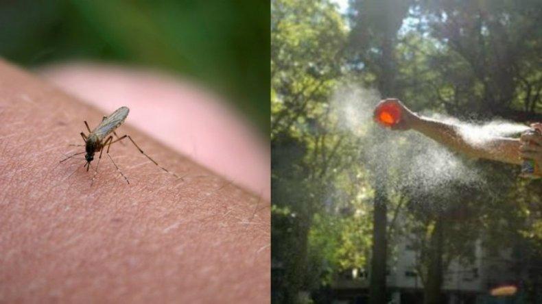 El Gobierno acordó bajar el precio de repelentes ante el avance del dengue