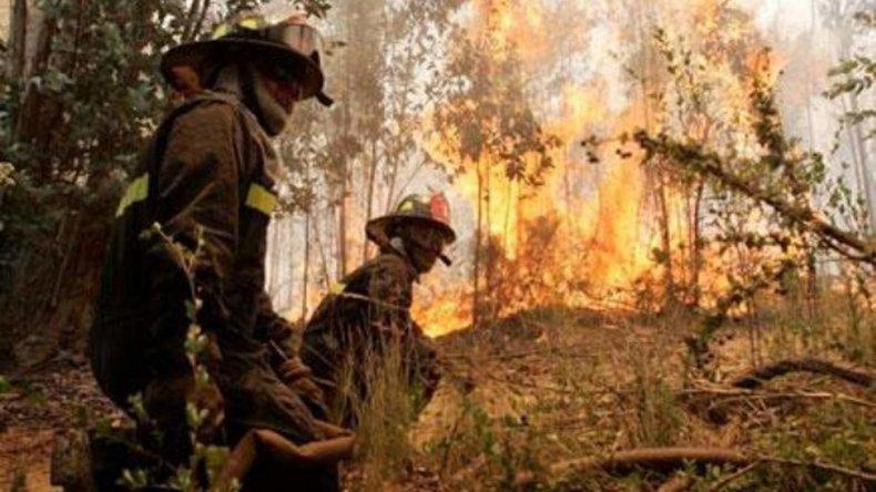 El sistema busca ser de utilidad para la prevención y combate de incendios forestales.