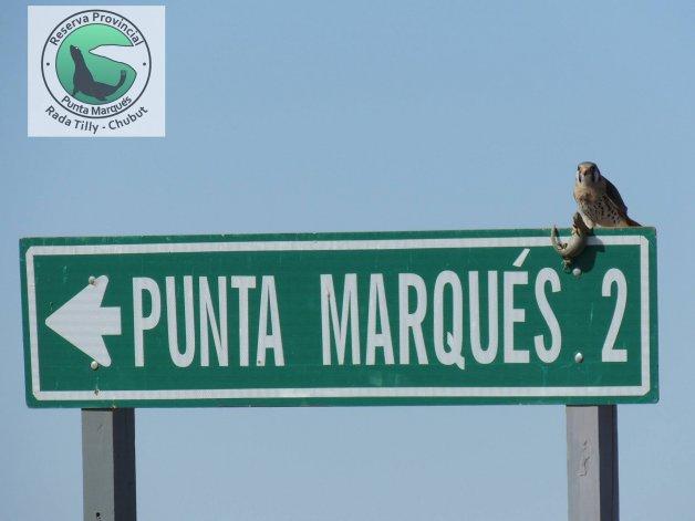 ¡Punta del Marqués cumple años y lo festeja con entrada gratuita!