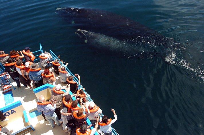Turismo avanza con el programa de promoción la experiencia Chubut