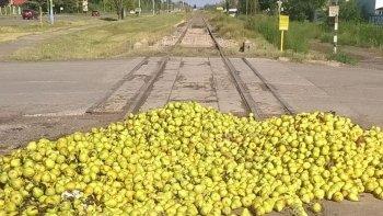 tiran 60 toneladas de pera reclamando una ruta ferroviaria