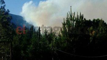 Un centenar de brigadistas combate el fuego en Lago Puelo
