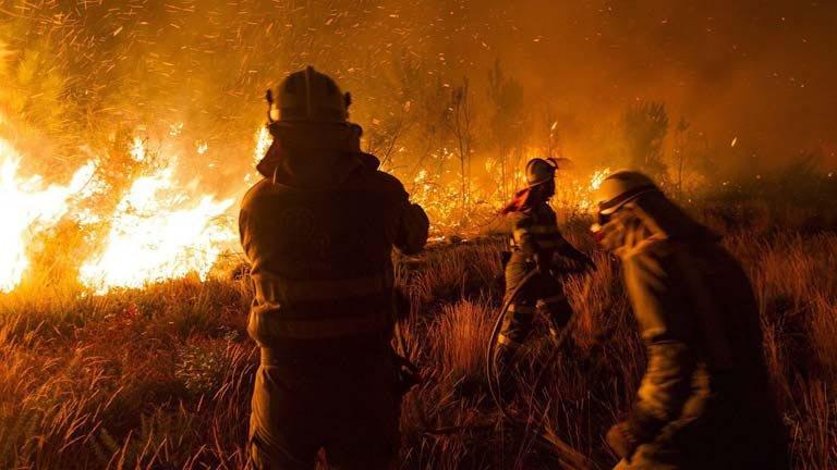 El trabajo de los brigadistas para extinguir el incendio forestal.