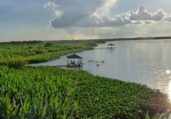 El Parque Nacional Río Pilcomayo fue creado en 1951 para proteger pastizales