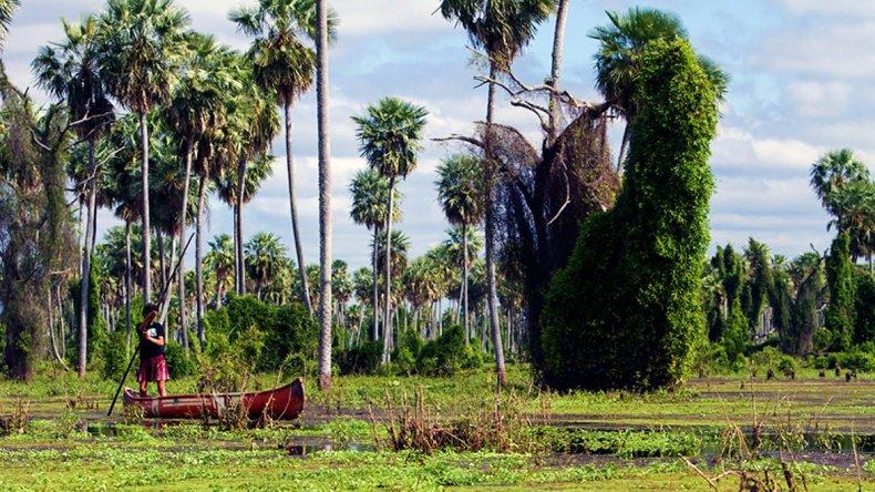 Uno de los tantos atributos de la zona es la riqueza cultural evidenciada por la presencia de diferentes comunidades étnicas que junto a criollos coexisten con el ambiente