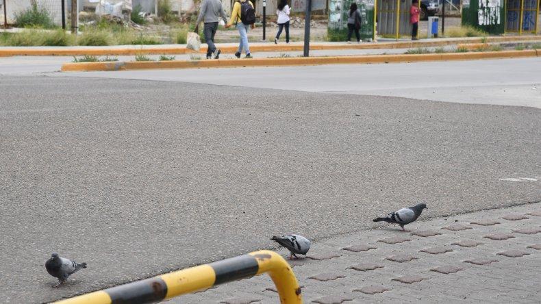 Paisaje de Comodoro. Foto: Mauricio Macretti / El Patagónico
