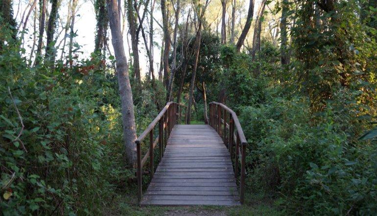 Huella Entrerriana está en pleno desarrollo pero sus senderos cuentan con señalización y se han instalado pasarelas.