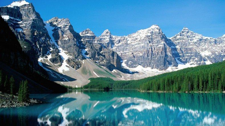 Bosques de coníferas conforman uno de los paisajes de montaña más bonitos del mundo.