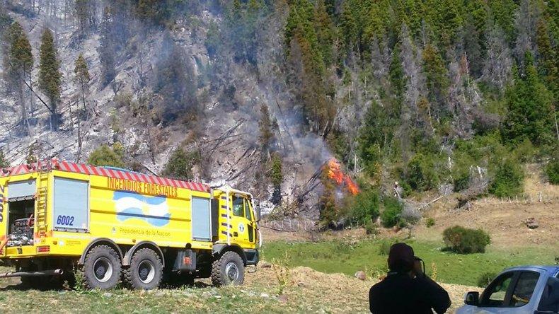 Nuevo incendio forestal en la cordillera: habría sido intencional