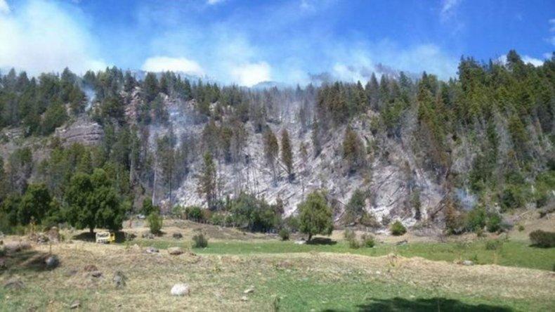 Confirmaron que detuvieron el incendio de legua 105