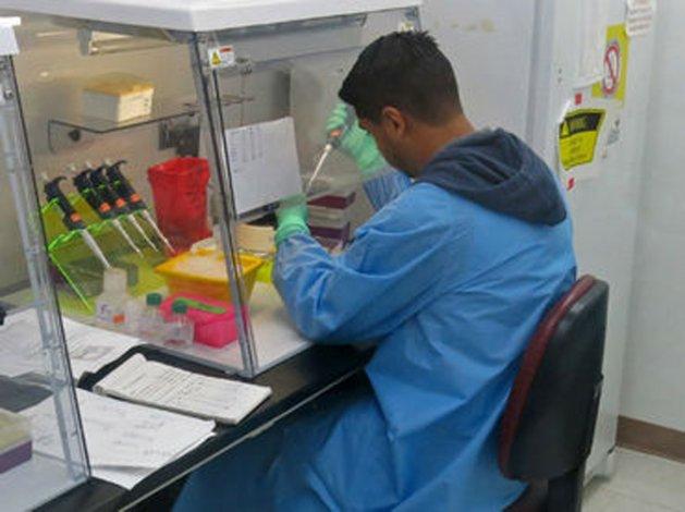 Un grupo de científicos estudiará a contagiados por el virus de zika.