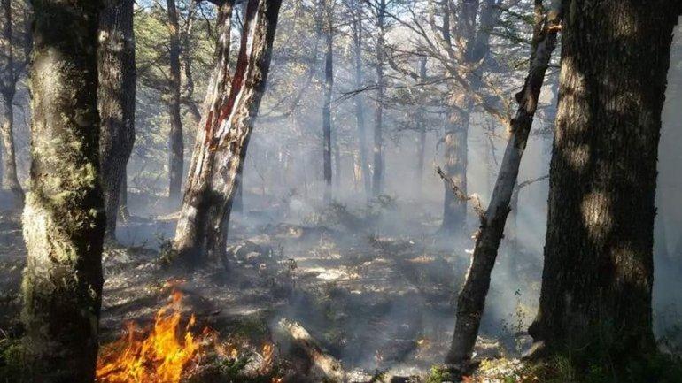 Siete incendios fuera de control y condiciones climáticas adversas en Río Pico