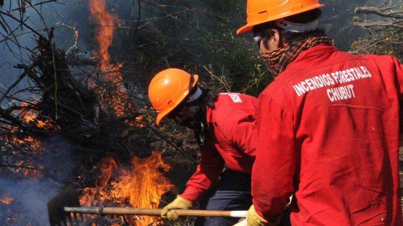 El fuego arrasa con el bosque en Río Pico. De diez focos ya se controlaron cuatro