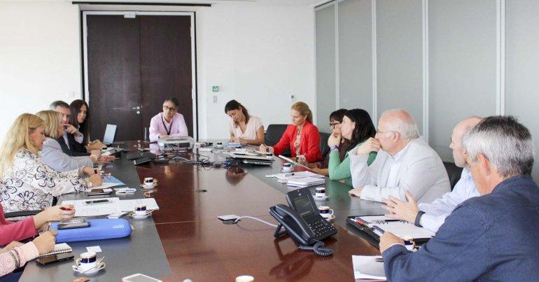 En la reunión del Ente Patagonia Argentina se planteó la necesidad de una efectiva conectividad aérea en la región.