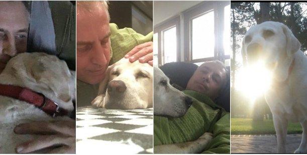 El conmovedor mensaje de Marley por la muerte de su perro