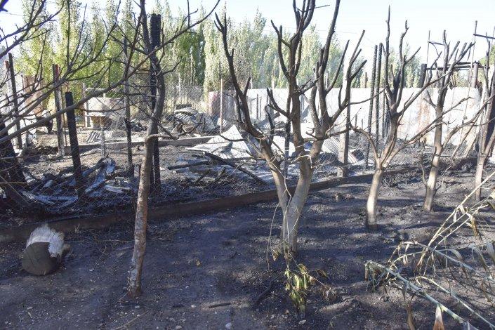 Las llamas consumieron la totalidad de un galpón ubicado en el Cordón Forestal.