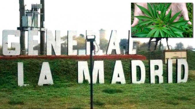El pueblo que quiere ser productor de marihuana medicinal