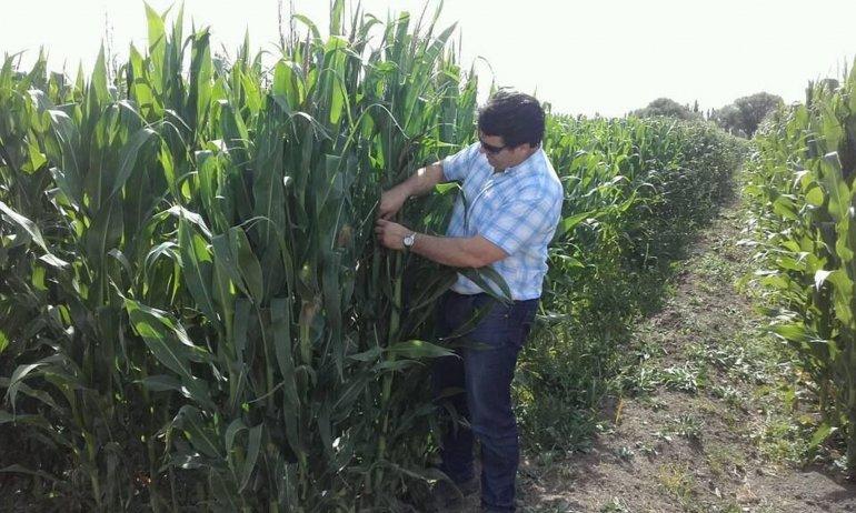 En 28 de Julio avanza el proyecto para la elaboración de biodiesel.
