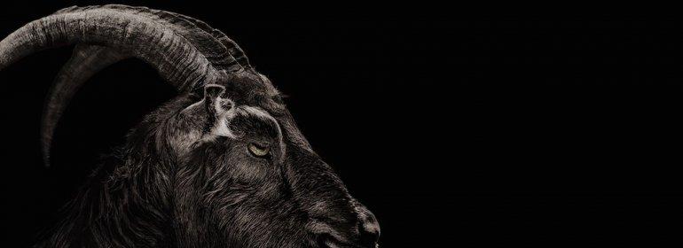 Terror y aventura en los cines de Comodoro