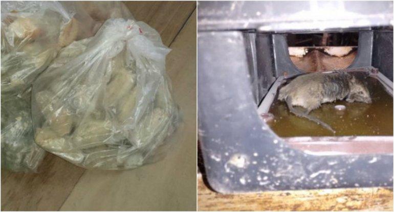 Encontraron ratas y alimentos vencidos en una panadería