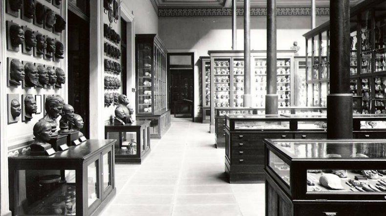 El espacio del Museo de La Plata donde se encuentra la cabeza de Sam Slick.