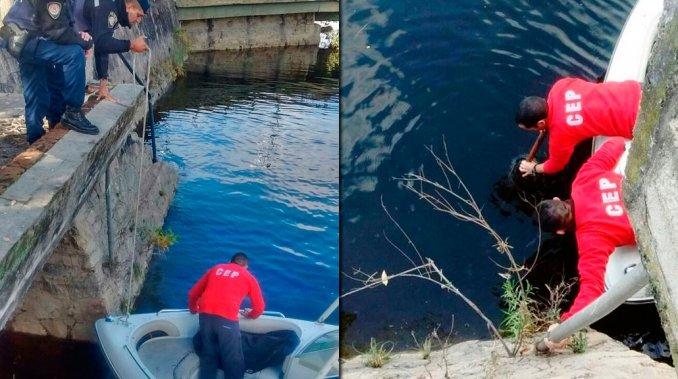 Quiso arrojar las cenizas de su esposo a un lago, se le cayó la urna y la recuperaron