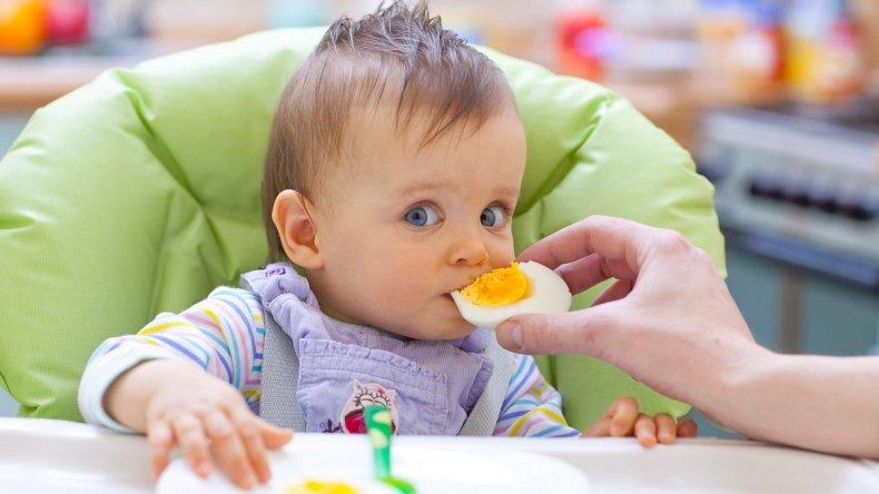 Jornada de Alergia en pediatría