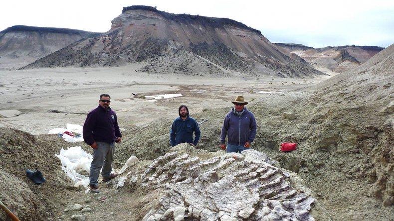 Chubut es tierra de dinosaurios. En el Departamento Sarmiento se han realizado algunos de los descubrimientos más importantes.